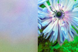 ornamentni_sklo_float_matovy_mala (1)